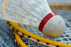 Badminton (notpushkin) Tags: macromondays summerolympicsports