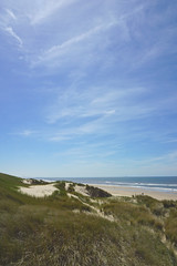 DSC00368 (Evert Bosdriesz) Tags: netherlands nederland castricum noordhollands duinreservaat