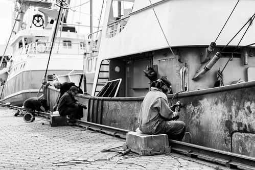 "3x50 2015 - 19 - Men at Work, Harbor of Urk (Netherlands) • <a style=""font-size:0.8em;"" href=""http://www.flickr.com/photos/53054107@N06/17776606382/"" target=""_blank"">View on Flickr</a>"
