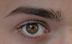 Deep look (fabian.drozd2404) Tags: iris brown macro green eyes eyebrow grn braun makro auge schwarz wimper pupille augenbrauen
