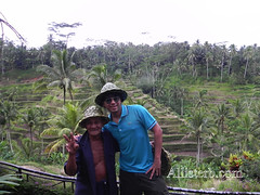 Rice farmer in Ubud, Bali (allisterbdotcom) Tags: bali indonesia southeastasia farmer ricefields islandlife allisterbcom