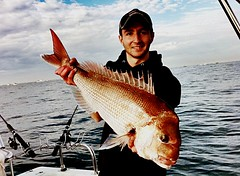 Anthony Iuele sent in this snapper caught in Port Philip Bay, Victoria, Australia.  #photocontest #stormlinegear