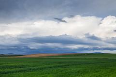 se avecina tormenta (Juan Ig. Llana) Tags: primavera cielo nubes tormenta soria castillayleon sembrados camposdecereal almenardesoria