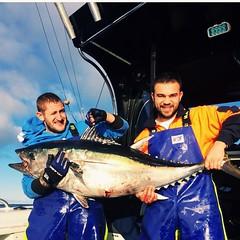 A 65kg Tuna caught by Chakka