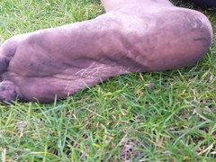 Dirty soles (bfe2012) Tags: boy black feet nature foot freedom shoes toes hiking indian lifestyle dirty barefoot barefeet hiker tough soles anklets barefooted barfuss barefooting dirtyfeet dirtysoles barefoothiking barefooter baresoles toughsoles barefootlifestyle barefoothiker