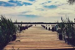 Oasi WWF Lago di Burano -Capalbio (RONALD MENTI) Tags: italy landscape photography photo italia foto fotografia toscana paesaggio capalbio lagodiburano