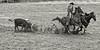 ajbaxter160717-0314-Edit (Calgary Stampede Images) Tags: calgarystampede 2016 rodeo alberta canada ajbaxter allanbaxter