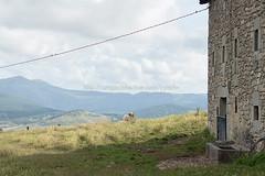 Valle de Mena (15) (cynefin_) Tags: httpcargocollectivecomcynefin valle de mena merindades burgos castilla y len villasana cynefin paisaje naturaleza