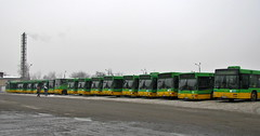 MPK Pozna bus depot (xjr1) Tags: pozna poland mpkpozna depot zajezdnia bus man ikarus 28070a nl202 nl223 ng272 ng313 1059 1017 1205 1216 1206 1011 1453 1227 winter
