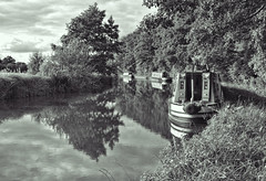 stratford on avon canal (plw1053) Tags: trees blackandwhite bw reflection water monochrome countryside canal narrowboat stratford waterway marcellus plw1053 paullgwells