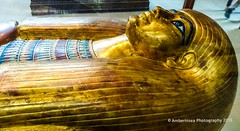 Second Anthropoid Coffin of Thuya - Cairo Museum (Amberinsea Photography) Tags: egypt mummy coffin gilded treasures ancientegypt cairomuseum thuya anthropoidcoffin amberinseaphotography