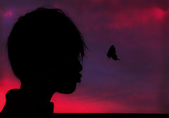 The butterfly whisperer (moofishbear) Tags: sunrise pinksky butterfly creative fantasy silhouette child childhood memories dawn boy sky outdoors magenta colours colour beauty morning pink