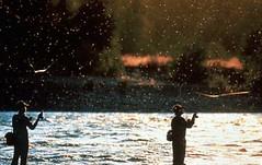 Et au milieu coule une rivière (Valérie 92700) Tags: pêche pche