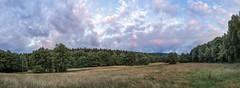 DSC03731-Pano-Bearbeitet-Bearbeitet-Bearbeitet-2 (willykerntopp) Tags: wiesen hnerbergwiese kronberg knigstein taunus rheinmain wolken wald