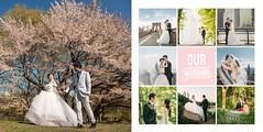 Wechat_XinPanNY02 (Dear Abigail Photo) Tags: nyc wedding newyork album   prewedding weddingalbum  weddingphotographer   dearabigailphotocom
