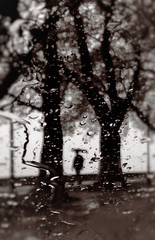 Rain (PattyK.) Tags: ioannina giannena giannina epirus ipiros greece grecia griechenland hellas ellada lakeside rain rainyday shadows rainywindow raindrops april 2016 ilovephotography blackandwhite ipiccy