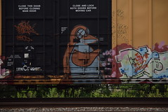 OXIDE (TheGraffitiHunters) Tags: graffiti graff spray paint street art colorful freight train tracks benching benched boxcar oxide penguin