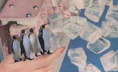 20th August 2016 - los dias contados : ice (kurberry) Tags: losdiascontados collage cutpaste collageaday vintageephemera penguin ice icemaker