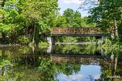 lac des Ibis (FauxK@L (Thanks for your comments)) Tags: france nature pont paysages