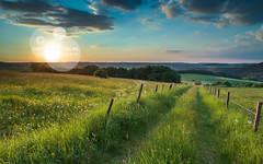 sunset trail panorama (CreativeNature.nl) Tags: road trip blue sunset summer sky cloud flower color tree green nature beautiful field grass rural sunrise germany way point landscape dawn countryside power cloudy dusk hiking path background horizon country hill perspective meadow dramatic rocky scene eifel hills dirt trail german land winding agriculture vanishing idyllic cloudscape scenics freshness