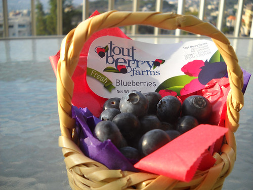 Blueberry Basket Medium b May 10, 2014