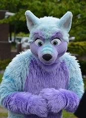 Confuzzled 2015 377 (finbarzapek / SeanC) Tags: costumes animal furry convention furries con fursuit 2015 cfz fursuits confuzzled cfz15