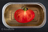 Tomato with square tin can (foodfulife) Tags: red stilllife food vegetables tin photography tomatoes creative picture vegetable can photograph half foodblog foodphotography palp serenacarminati foodfulife tomatointincan