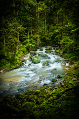 Pesenbachtal (jochenlorenz_photografic) Tags: longexposure nature beautiful forest river flow austria riverside outdoor hiking earth natur tokina explore exploration nationalgeographic discover lightroom natgeo beautifulnature downbytheriver wonderfulworld wildnature ilovemycountry discovertheworld worldshots earthpics tokina1116mm28 austriannature nikond7100 earthpic igaustria austrianblogger discoveraustria
