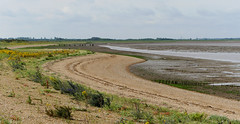 Low tide (yvonnepay615) Tags: panasonic lumix gh4 nature coast snettisham norfolk eastanglia uk coth