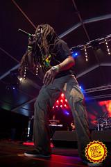 Omar Perry @ Afro-Latino Festival 2016. (www.afro-latino.be) Tags: summer music sun festival fun al concert belgium belgie live afro belgi zomer muziek latino koen omar bree perry zon gabriels limburg afrolatino sfeer 2016 omarperry