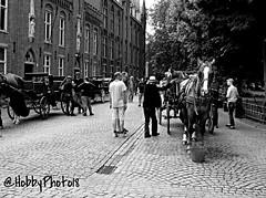 Touristes - Bruges (hobbyphoto18) Tags: street people blackandwhite bw horse cheval belgium belgique noiretblanc pentax streetphotography tourist nb bruges blacknwhite rue extrieur personne touriste calche k50 photoderue humain pentaxk50