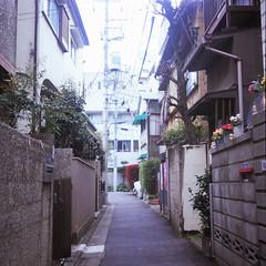 (  / Yorozuna) Tags: filmscanning filmshot     analogphotography  shinjukuward  tokyo japan  wakamatsucho  wakamatsukawada        alley alleyway   backalley road flexaretautomatvi flexaretvi