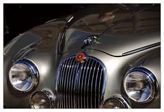 Jaguar (Ruud Onos) Tags: nationale oldtimerdag lelystad nationaleoldtimerdaglelystad ruudonos oldtimerdaglelystad havhistorischeautomobielverenigingnederland