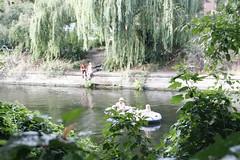 Berlin (annamartta) Tags: berlin city citybreak plants trees street canal