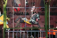 IMG_7547 Merry-go-round horse (Rodolfo Frino) Tags: merrygoround horse wooden blackhorse calesita rodolfofrino