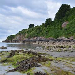 St Mary's Bay (Jacqueline138Kelly) Tags: jacquelinekelly nikon d5200 18250macro holiday devon brixham coast seaside southcoast beach landscape calm fun rockpools seaweed rocks tide