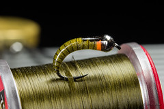 Olive larvae with orange hot spot, size 12 (Masi Hast) Tags: flyfishing flytying