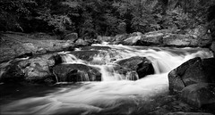 Green River Narrows (GR167) Tags: bw landscape whitewater silverefex 5d 2035l