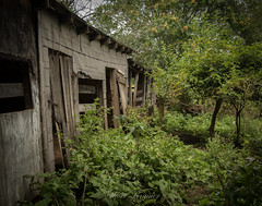 Fairlane Farm-31 (hiker083) Tags: abandoned farmhouse decay decrepit derelict cars vacant oncewashome