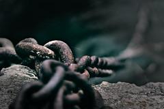 Cadenas (jlborelli) Tags: chains cadenas dof sony sonyalphailce6000 spiderweb teladearaa muelle dock