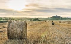 Rulo de Septiembre (ivandabouza) Tags: rulo gallego galicia hierba paisaje heno campo ourense cielo verano compactadora naturaleza