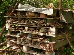 Bug hotel (JuliaC2006) Tags: insect sticks pallets twigs