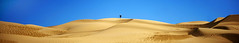 Me (Donald Palansky Photography) Tags: people selfportrait me nature photographer desert hiking dunes dune tripod footprints hike adventure explore meandmycamera donaldpalansky