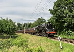 In the Woods (4486Merlin) Tags: 75078 brstd4mt460 england europe exbr heritagerailways keighleyworthvalleyrailway railways steam transport unitedkingdom westyorkshire oxenhope gbr vintagetrainevent vintagetrains