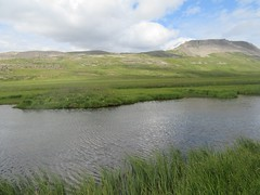 A meadow somewhere in the Snfellsnes Peninsula (fionasz) Tags: iceland snfellsnes meadow summer 24 hour sun nature lake peninsula
