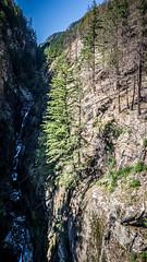 Gorge Creek and Falls-004 (RandomConnections) Tags: cascades northerncascades skagitcounty skagitriver washington rockport unitedstates us