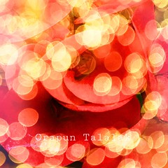 (Myphotorose-on and off.. :)) Tags: flower flowersshotz flowersofinstagram flowersearth flowerstropical flowersmagazin floweroftheday naturesultans naturespecial natureisa natureshooters natureseekers photoadventure planetearth flowerdaily flowerspecial fiorirose flowerslovers flowerofthedaypretty instadaily flora flowerphotography struik florale fiore blommor blomst bloem fleur fleurs