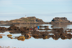 Yellowcraigs, East Lothian, Scotland (Alexis Manson) Tags: yellowcraigs east lothian scotland summer water lighthouse rocks rockpools paddling family sky