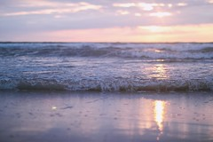 follow the ocean (evahgrf) Tags: beach ocean baltic sea wave waves sun sunset bokeh focus vacation holiday sky cloud clouds cloudy freelensing 14 500d netherlands north sand water evening evahgrf explore adventure pink nature outside landscape