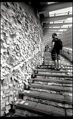 Do you hear the People Voice? (Chan, Danny) Tags: nikonsupercoolscan5000ed hongkong filmdev:recipe=9660 rolleirpx100 kodakhc110 film:brand=rollei film:name=rolleirpx100 film:iso=100 developer:brand=kodak developer:name=kodakhc110 leitzwetzlarsuperangulon21mmf34 leicam3 hongkongsumbrellarevolution street